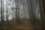 日向薬師登山2