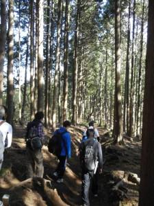 陣馬山からまずは明王峠を目指して歩きます。紅葉もきれいで人も多かったですが、山道は自然を感じさせてくれます。