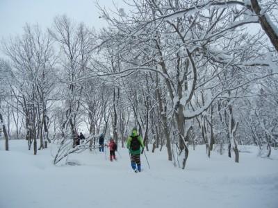 クロスカントリースキーで班ごとにマップとコンパスを頼りに静かな森の中を進んでいきます