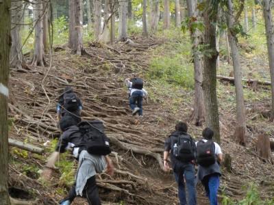 今年のゼミ生は全員男子ということもあり、直登コースを果敢に攻めていました