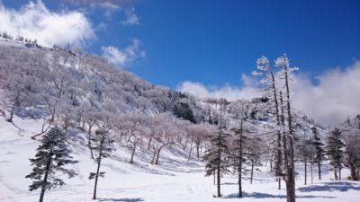雪の少ない今年は3月の連休に滑れるスキー場は限られていました